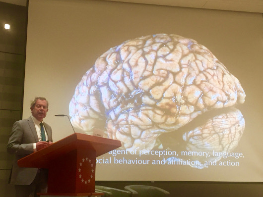 Presentation organized by the Belgian Brain Council