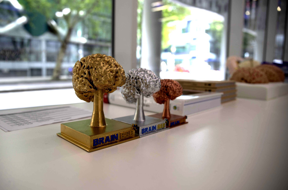 The trophies for first, second, and third place in the British Brain Bee 2019 in Cambridge, United Kingdom.