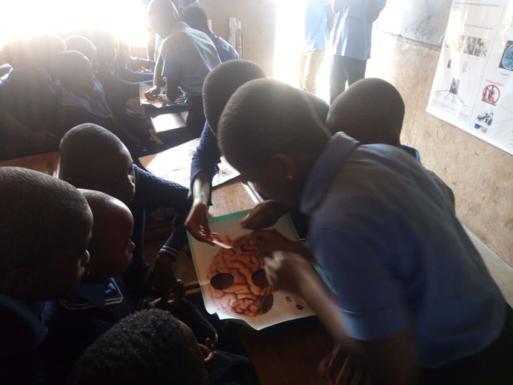 A teaching activity on the brain at a primary school organized by the Cameroon Association for Neuroscience (CAMANE) in Cameroon.