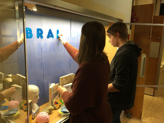 Psychology Club members set up a library display on the brain, organized by Chippewa Falls Senior High School in Wisconsin