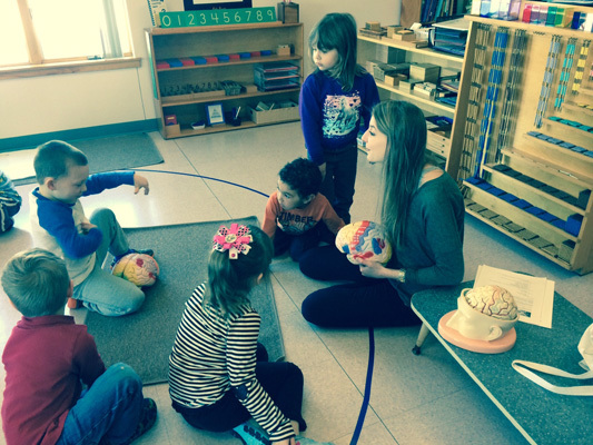 Montessori Students learn about the brain from Colby College students in Maine