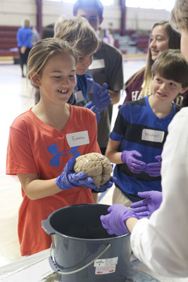 Neuroanatomy lesson with a real human brain at the Harvard Graduate School of Education