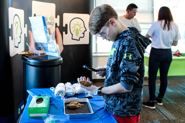 Examining a brain during an event organized by Health and Technology District in Surrey, Canada