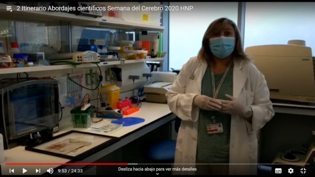 A virtual explanation of how to conduct investigations in neuroscience (basic research in spinal cord injury or neurodegenerative disease) organized by Hospital Nacional de Parapléjicos in Spain.