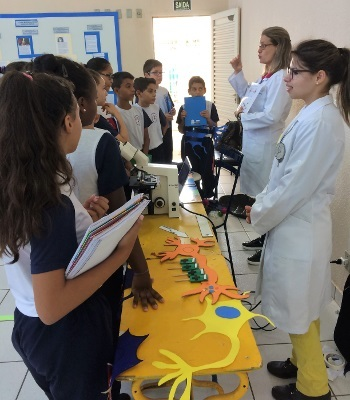 Students learn about the brain at an interactive stations at an event organized by Institute of Bioscience of Botucatu in Brazil