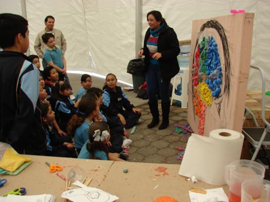 BAW activities Instituto de Neurobiología - UNAM