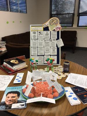 An information table on the brain organized by Linn Benton Lincoln Educational Service District in Albany, Oregon
