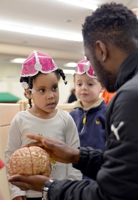 Children inspect a brain model at Berkley Building Blocks during an event organized by Marygrove College in Michigan