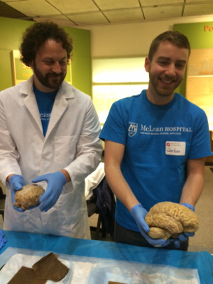 Holding brains at McClean Hospital, organized by Museum of Science, Boston