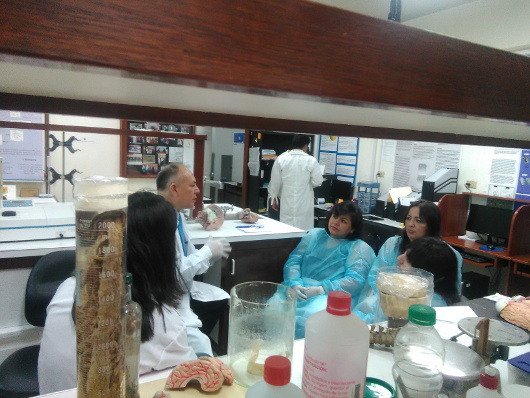 Learning about laboratory investigation and techniques organized by NeuroZoom in Peru