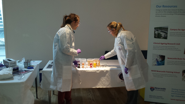Staining station at Brain Awareness Week hosted by Newcastle Brain Tissue Resource