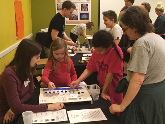 Students engage in an activity at the Amazing Brain Carnival organized by the St. Louis Chapter of the Society for Neuroscience in Missouri