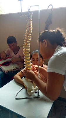 Examining a spine model at an event organized by State University of Pará in Brazil