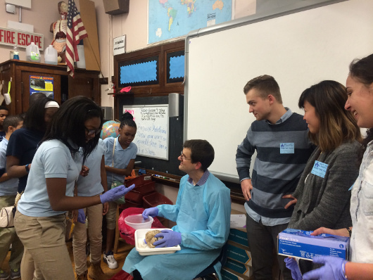 Students learn about and touch the human brain during a school visit organized by The University of Chicago