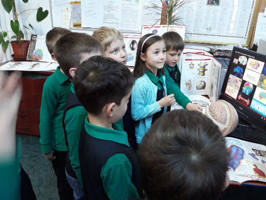 Students learn about the brain in the School Library, organized by The National College George Baritiu in Cluj-Napoca, Romania