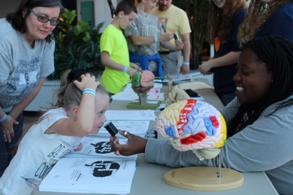 Visitors learn about sensation and perception at an event organized by The University of Tennessee at Martin in Tennessee