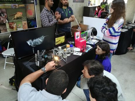 Bug Eyes Exhibit during the 10th Annual Miami Brain Fair organized by the University of Miami in Florida.