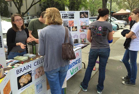 UC Davis students and faculty present lessons on the brain to the general public at the local Farmer's market in California