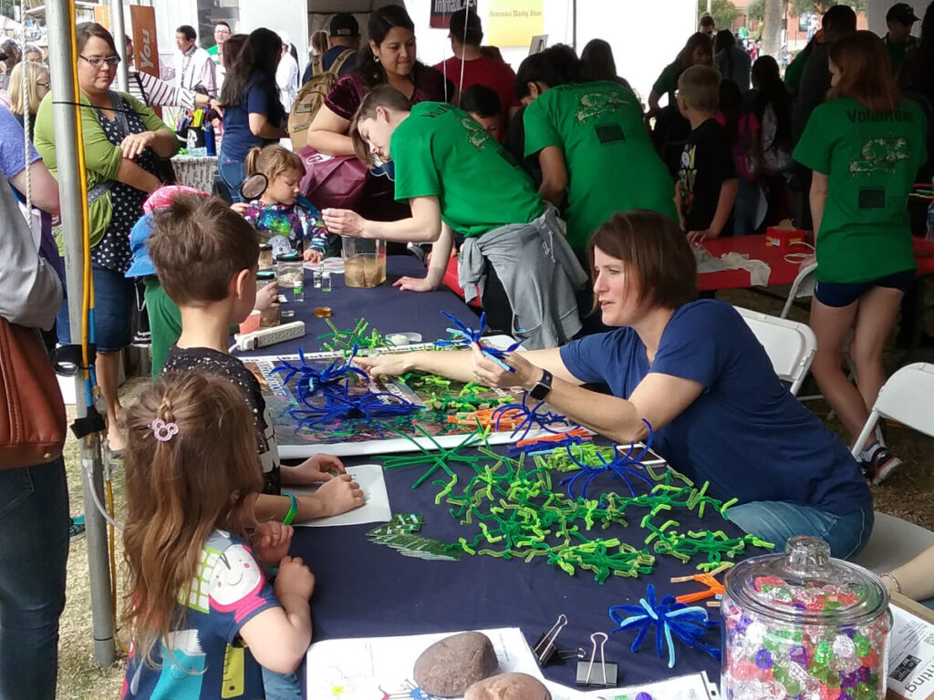 Making pipe cleaner neurons at an event organized by the University of Arizona.