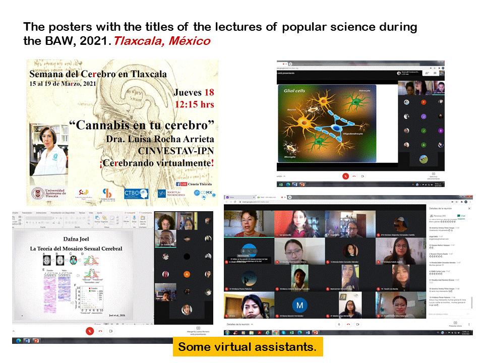 A virtual presentation organized by the Universidad Autonoma de Tlaxcala in Mexico.