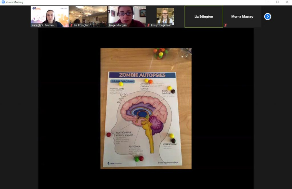 Online Zombie Autopsies activity organized by the University of Wyoming Brainy Bunch.