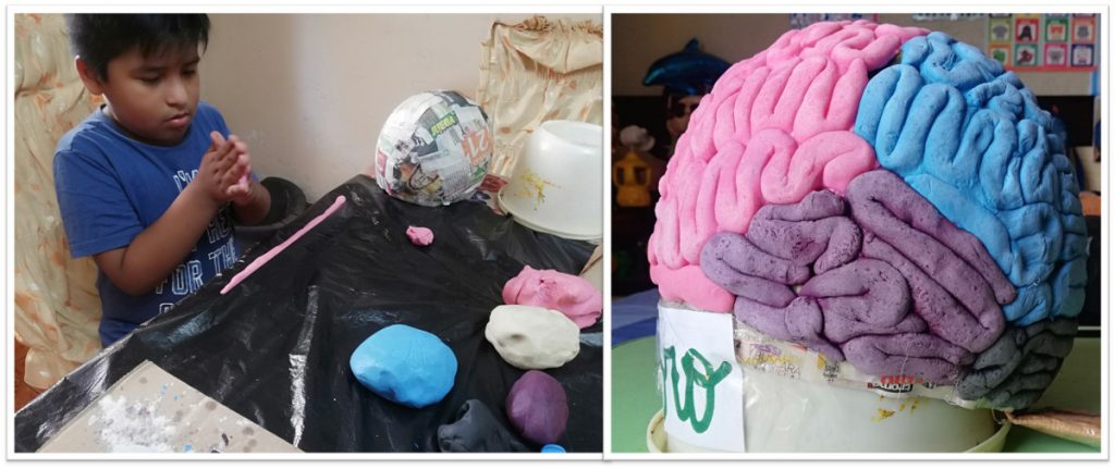 A 7-year-old makes a brain sculpture at an event organized by iep Exprofesso in Lima, Peru.